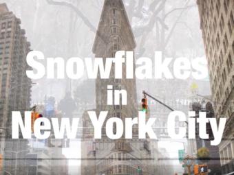 Snowflakes hits NYC